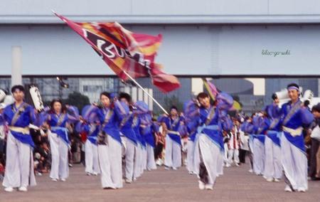 Odaibayosakoirikioh